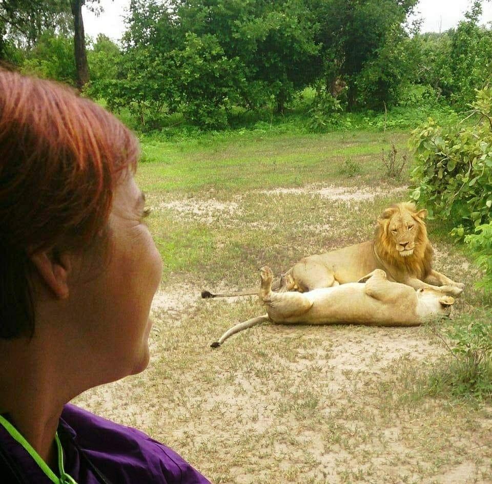 viaje safari África