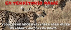 safari-barato-kenia